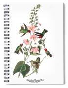 Vintage Columbian Humming Bird Audubon Spiral Notebook