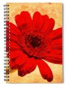 Vintage Gerbera Daisy Spiral Notebook