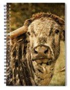 Vintage Longhorn Cattle Spiral Notebook