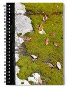 Vintage Moss Spiral Notebook
