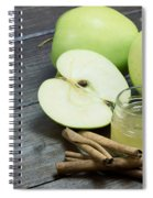 Vintage Photo Of Green Apples Spiral Notebook
