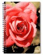 Vintage Rose 02 Spiral Notebook
