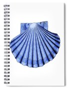 Vintage Scallop Shell Blue Spiral Notebook