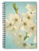 Vintage Spring Blossoms Spiral Notebook