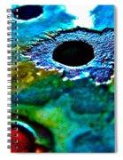 Vintage Strainer Three Spiral Notebook