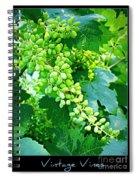Vintage Vines  Spiral Notebook