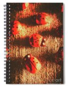 Vintage Wooden Ladybugs Spiral Notebook