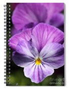 Viola Named Columbine Spiral Notebook