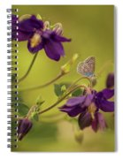 Violet Columbines Spiral Notebook