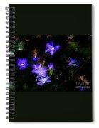 Violet Spiral Notebook