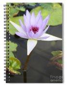 Violet Lotus Spiral Notebook