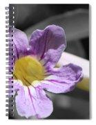 Violet Trumpet Vine Selective Color Spiral Notebook
