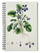 Violets Spiral Notebook