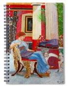 Violin Admirer Spiral Notebook