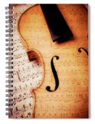Violin And Musical Notes Spiral Notebook