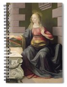Virgin Mary, From The Annunciation Spiral Notebook
