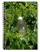 Virgin Mary Spiral Notebook