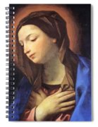 Virgin Of The Annunciation Spiral Notebook
