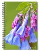 Virginia Bluebell Spiral Notebook