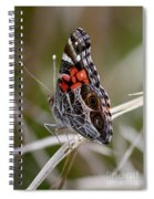Virginia Lady Butterfly Side View Spiral Notebook