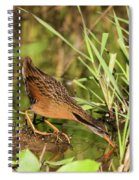 Virginia Rail Spiral Notebook