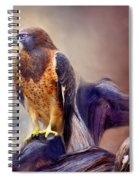Vision Of The Hawk 2 Spiral Notebook