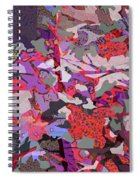 Vision Of The Ruins Spiral Notebook