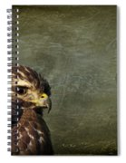 Visions Of Solitude Spiral Notebook