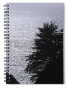 Vista - Julia Pfeiffer Burns State Park Spiral Notebook