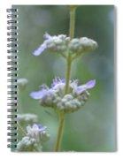 Vitex Cannabinifolia Spiral Notebook
