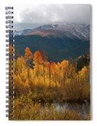 Vivid Autumn Aspen And Mountain Landscape Spiral Notebook
