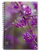 Vivid Beauty Berries Spiral Notebook