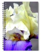 Vivid Iris 6622 H_3 Spiral Notebook