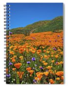 Vivid Memories Of The Walker Canyon Superbloom Spiral Notebook