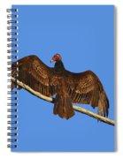 Vivid Vulture .png Spiral Notebook