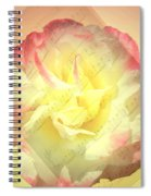 Voice Of The Heart A Rose Portrait Spiral Notebook