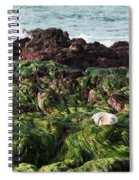 Voice Of The Sea Spiral Notebook