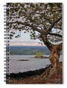 Volcano Through The Tree Spiral Notebook