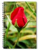 Voluptuous Spiral Notebook