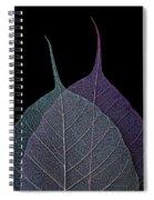 Vulnerability Spiral Notebook