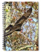 Vulture Glide Spiral Notebook