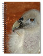 Vulture Portrait Spiral Notebook