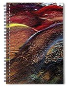 W 010- Hills Spiral Notebook
