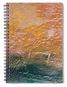 W 013 Spiral Notebook