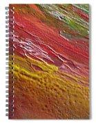 W 036 Spiral Notebook