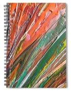 W 043 Spiral Notebook