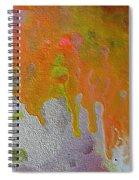 W 050 Spiral Notebook