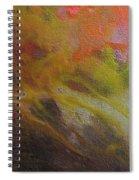 W 051 Spiral Notebook
