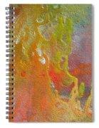 W 052 Spiral Notebook
