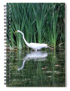 Wading And Waiting Spiral Notebook
